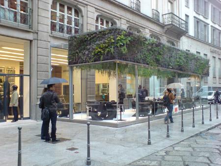 Вертикална градина на улицата
