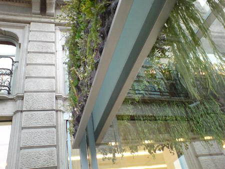 Вертикална градина детайл