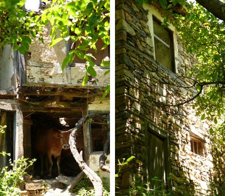 Къщите са за сериозен ремонт