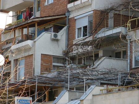 Асми, типични за българските дворове